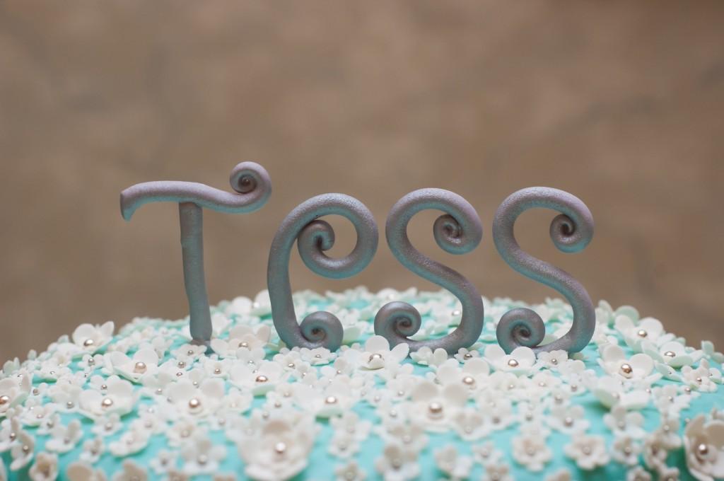 Tess-96